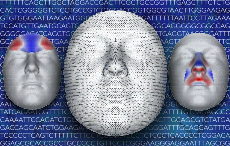 The researchers added 7000 data points on 3D images of the face. The red and blu